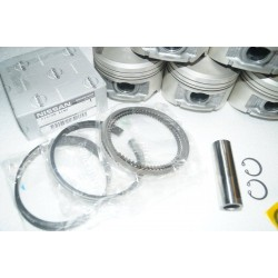 OEM Nissan Piston Ring Set
